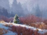 <h5>Morning Mist</h5>