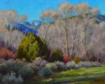 <h5>Seco Cottonwoods 16x20 oil on linen</h5>