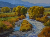 <h5>Arkansas River Cottonwoods 12x16 Oil on Linen</h5>
