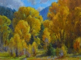 <h5>Cottonwood Morning 12x16 Oil on Linen</h5>